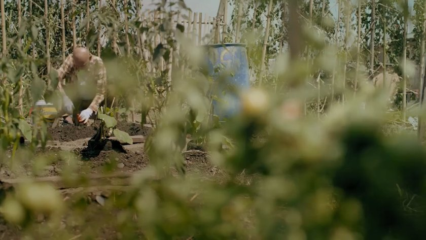 Antonio (Bembol Roco) tending to plants in a backyard farm in 'What Home Feels Like' (2017).
